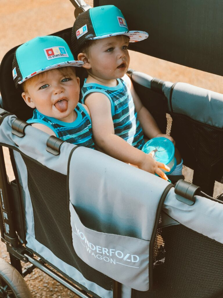 The best stroller wagon for twins!