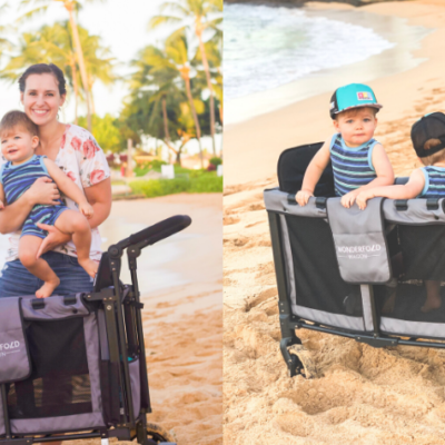 The Best Stroller Wagon