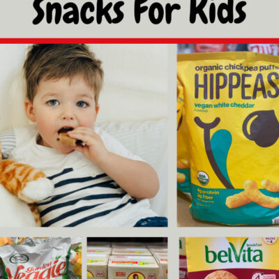 7 Best Pantry Costco Snacks For Kids